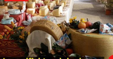 I caseifici trevigiani protagonisti a Caseus Veneti