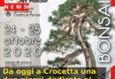 Da oggi a Crocetta una due giorni dedicata ai bonsai