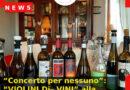 """""""Concerto per nessuno"""": """"VIOLINI Di– VINI"""" alla Cantina Vini Sara Meneguz"""
